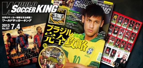 ブラジル完全攻略 ワールドサッカーキング0704号(No.261/6月20日発売)