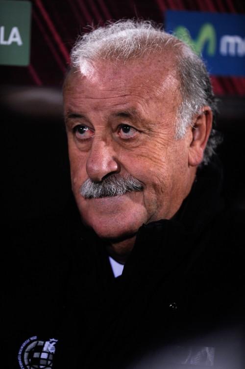 前回王者スペイン代表のデル・ボスケ監督、W杯出場決定は「当然」
