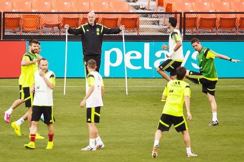スペイン代表監督、オランダとのW杯初戦へ抱負「恐れてはいない」