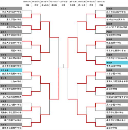 決勝カード決定…初優勝狙う鹿児島育英館と王座奪還目指す青森山田