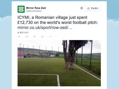 ルーマニアの村が約250万円でサッカー場作るも…ピッチ内に大木残す