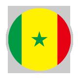 ●日本とGL第2戦で対戦!セネガル代表選手名鑑