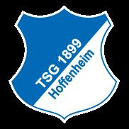 hoffenheim_ver2015