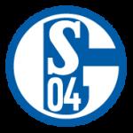 schalke_ver2015
