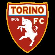 torino_ver2015
